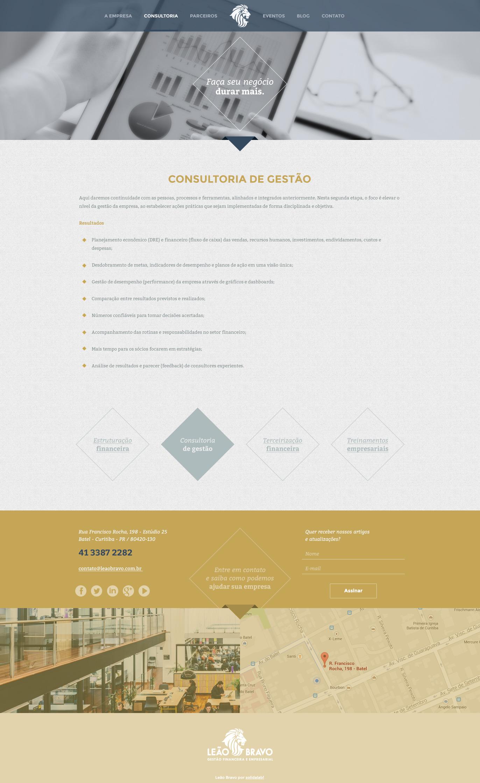 3-leao-bravo-consultoria